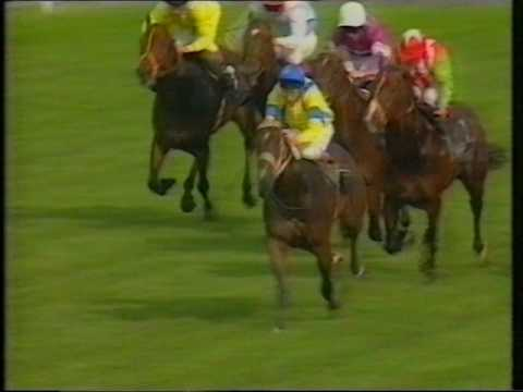 1993 Army Benevolent Fund Rated Handicap