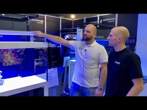 Fisch Und Reptil 2019 - Giesemann Aurora V8 Eco Hybrid / Stellar Dim. / Neue Linea Aquarium - Serie