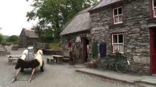 Molly Gallivan's Cottage In Ireland