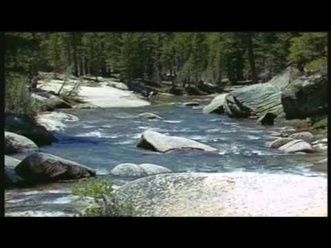 Nature's Symphony - soothing classical music and spectacular wildlife footage