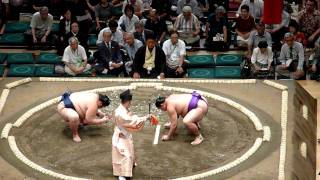 Sumo Fight 1 - Awesome HD