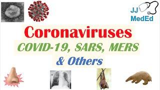 Coronaviruses | Discovery, Origins & Symptoms of COVID-19, SARS, MERS and Other Coronaviruses