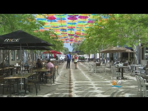 Umbrella Sky Art Installation In Coral Gables Is A Breath Of Fresh Air