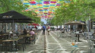 Umbrella Sky Art Installation In Coral Gables Is A Breath Of Fresh Air screenshot 2