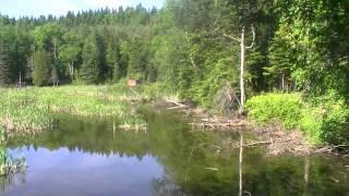 camping de la rivière 1