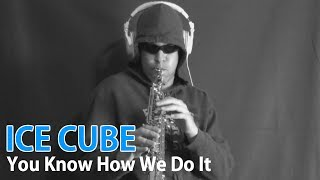 Ice Cube - You Know How We Do It - Soprano Sax - BriansThing