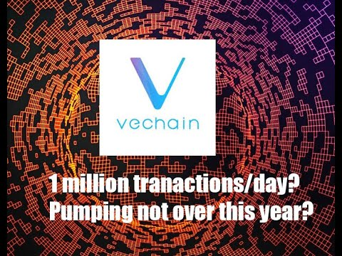 Vechain 1 million transactions per day in the Short term? More price actions to come?