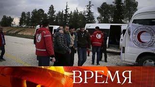 Обмен пленными состоялся в Сирии.