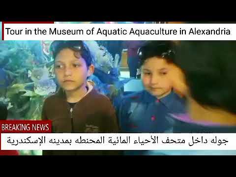 Tour in the Museum of Aquatic Aquaculture in Alexandria