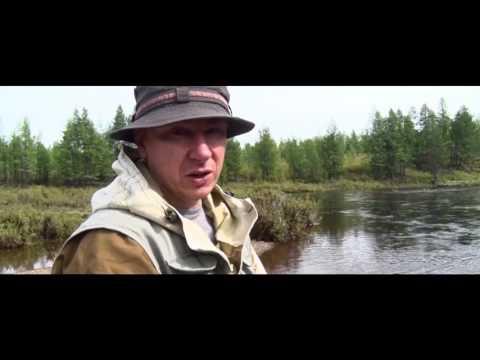 видео: Река Мая дорога ста лун 1часть