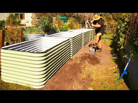 Dirt CHEAP But PREMIUM Way to Fill LOTS of Raised Garden Beds