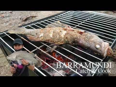 Pulau Ubin Fishing   Barramundi Catch And Cook