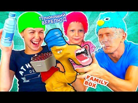 Новая <b>настольная игра</b> Плюющийся Верблюд. Родители и дети ...