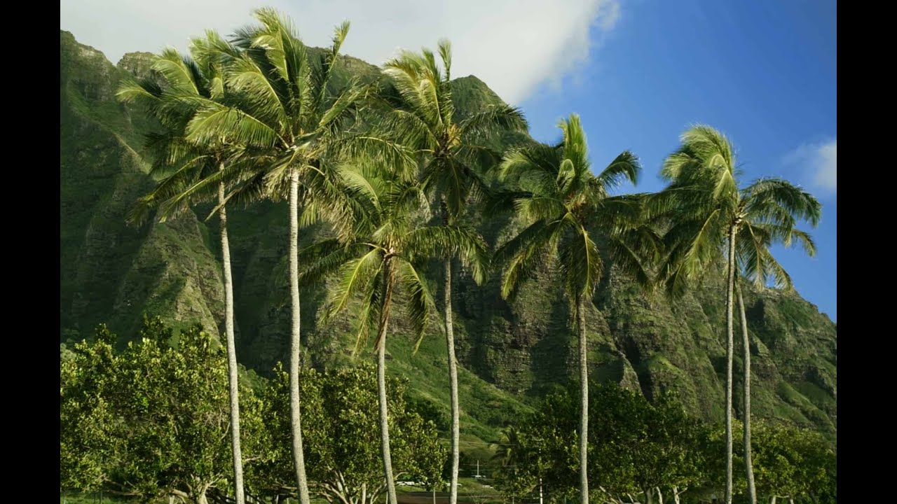 Paisajes Wallpapers Full Hd Paisajes De Hawaii 4k 60fps Ultra Hd 2160p Youtube