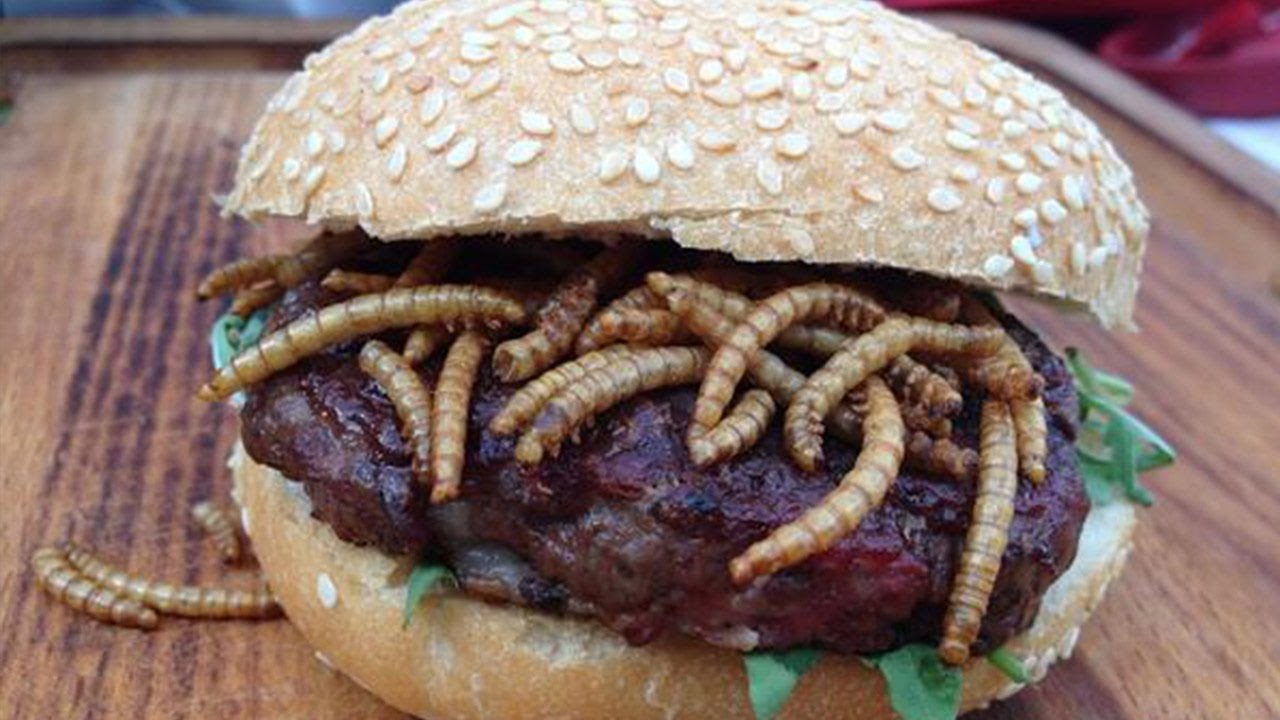 Woman Finds Maggots In Her Burger Youtube