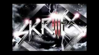 Skrillex - Drop The Bass