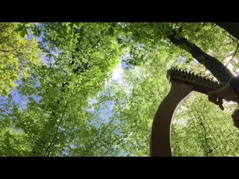 Impro en duo - harpe, chant et oiseau coucou