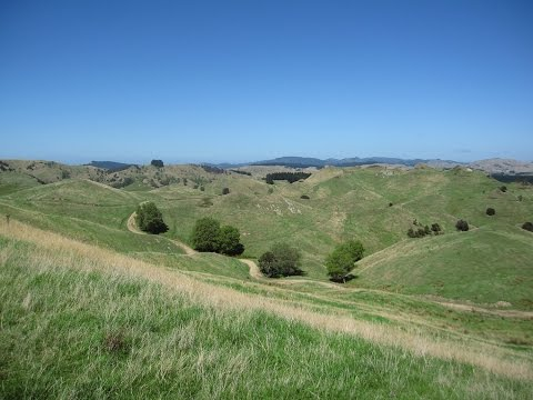 Bushgrove- 1,086 ha Sheep & Beef Farm- FOR SALE by NZR