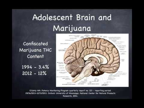 Cannabis Use in Adolescents - Kristin Dawson, MD
