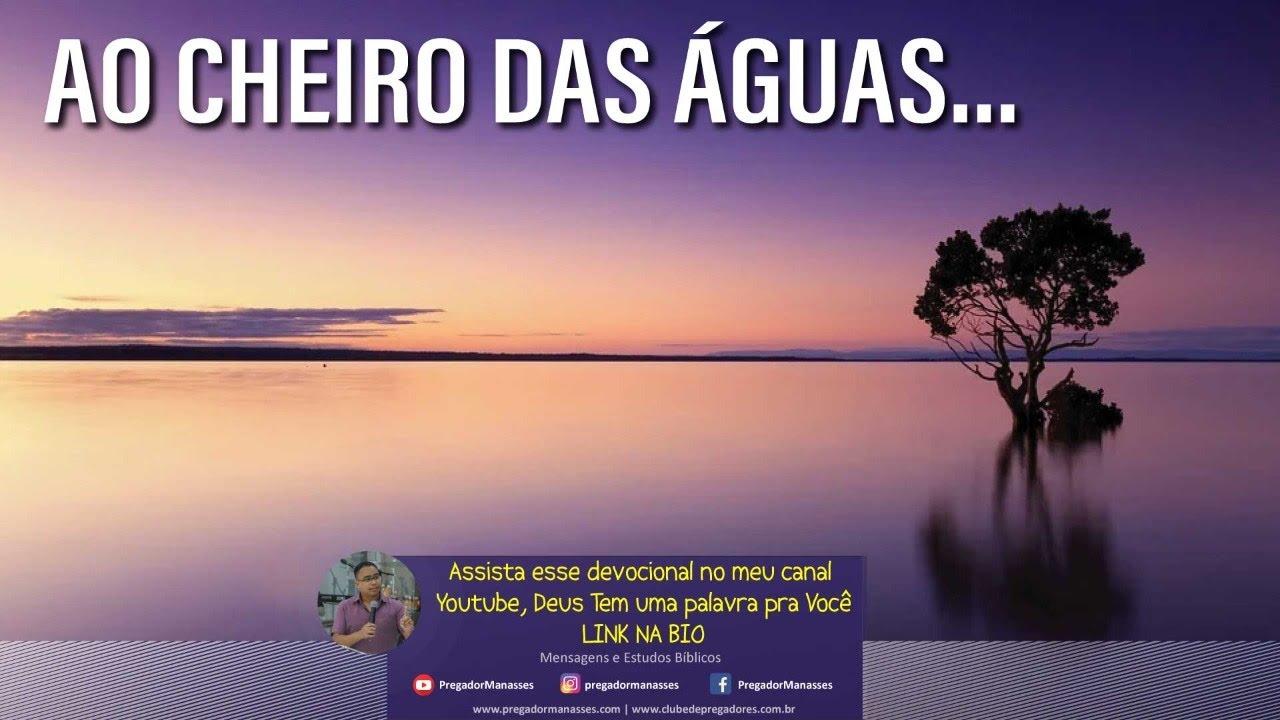 Download Palavra do Dia 13/10/2021 - Ao Cheiro das Águas....