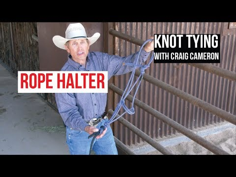 KNOT TYING: The Rope Halter