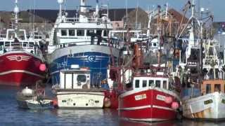 Fishing boats in Howth Harbour, Ireland