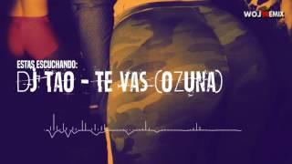 ♚★ Dj Tao   Te Vas Remix landia 2016 ♚★