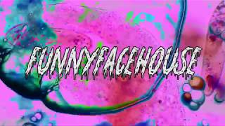 Funny Face House - Projection