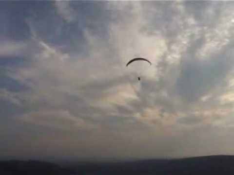 Terridactyls' first soaring flight