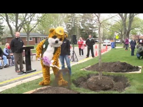 Mount Prospect Arbor Day 2016 - Forest View Elementary