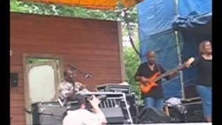 Chicago Blues Festival 2005 - Calvin Cooke