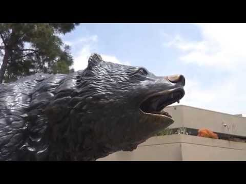 A Day In The Life of A Bruin | UCLA