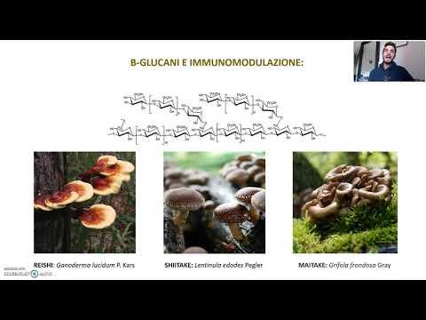 Nutraceutici e Sistema Immunitario: Resveratolo e Beta-glucani