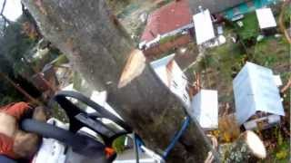 видео Удаление деревьев