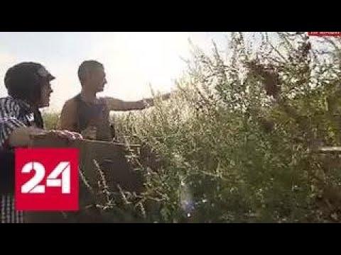 В окопах ДНР: Евгений Попов об обстановке на передовой - Россия 24