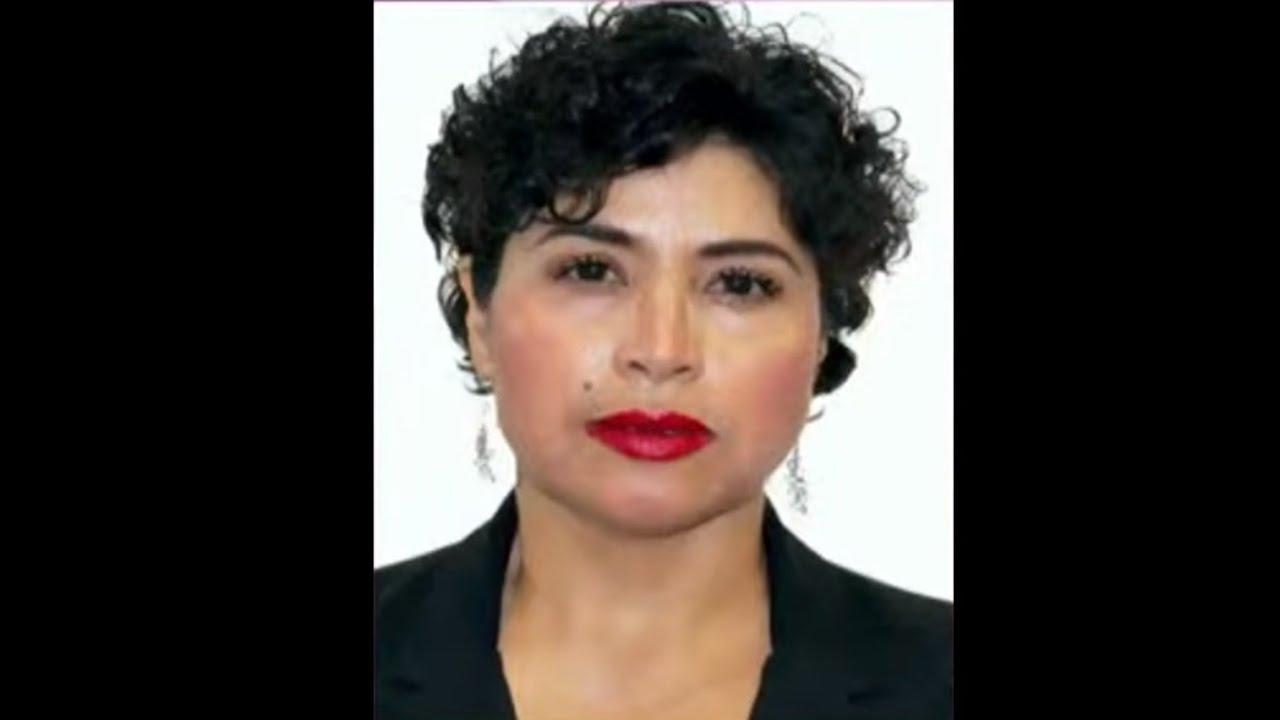 Dip. Anita Sánchez Castro (MORENA) / Iniciativa en materia de perspectiva de género.
