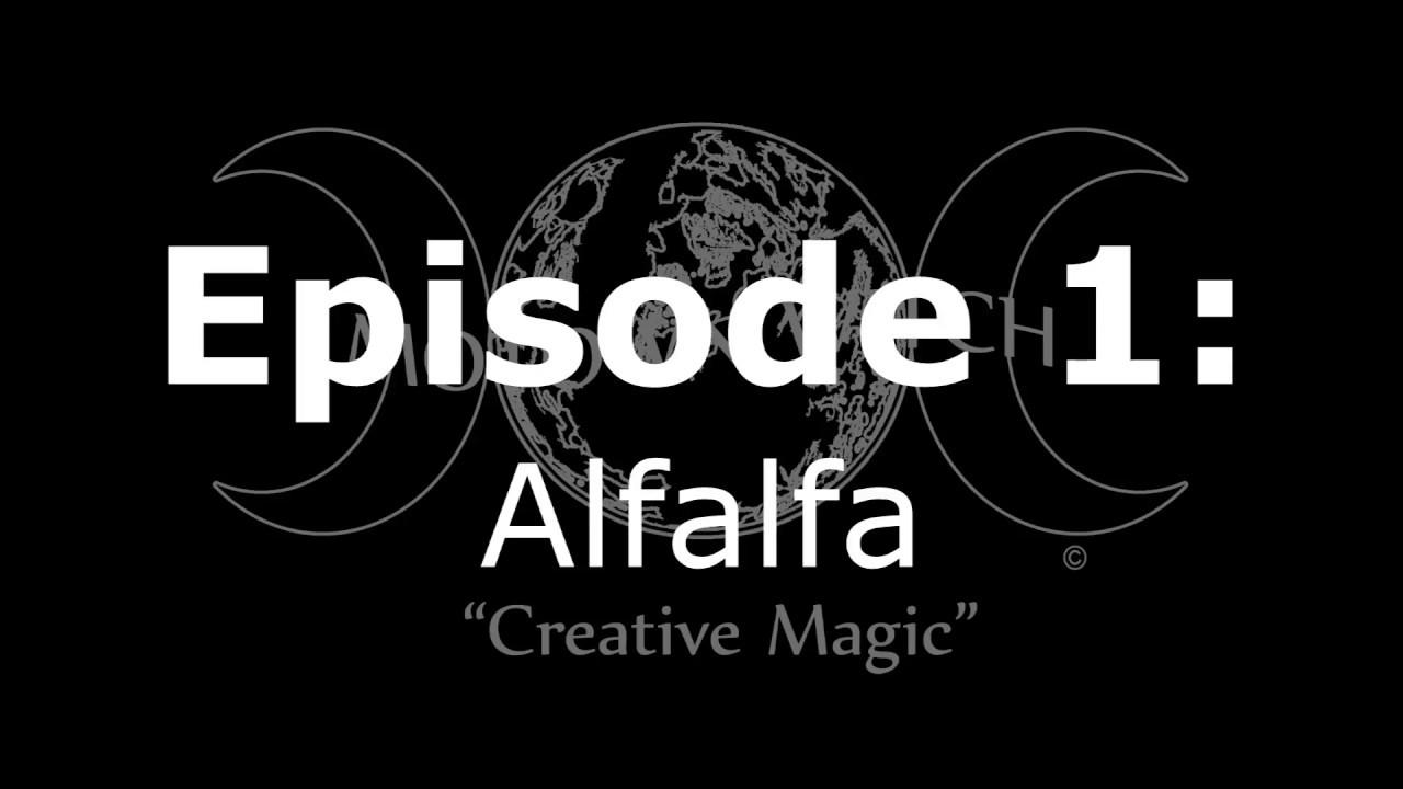 MotownWitch - Creative Magic