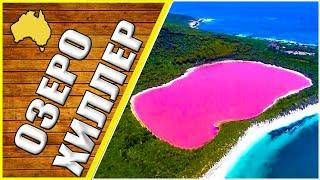 Розовое озеро, природа Австралии, озеро Хиллер