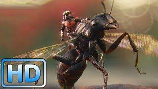 Человек-муравей сбегает из тюрьмы / Человек-муравей (2015)