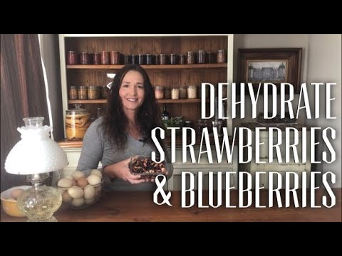 How to Dehydrate Strawberries & Blueberries