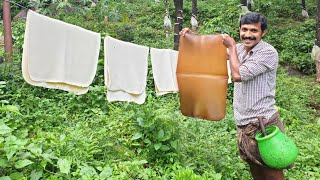 Rubber tapping method in kerala