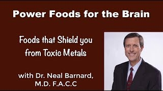 Power Foods for the Brain - Part 2 - Dr. Neal Barnard