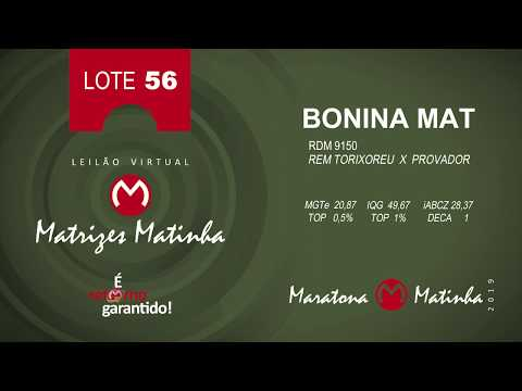 LOTE 56 Matrizes Matinha 2019