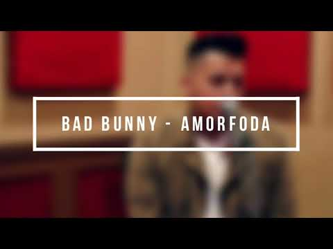 Bad Bunny - Amorfoda by Anth and Conor Maynard Lyrics