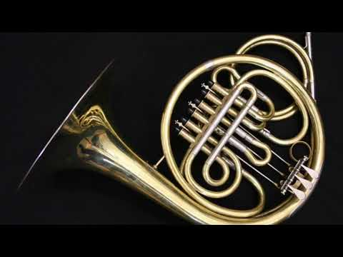 Vienna Horns - Fanfare For The Common Man