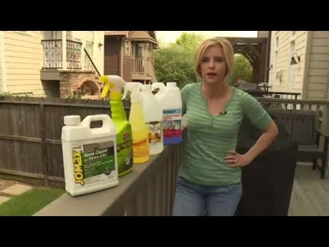 Best products to remove outdoor mold, mildew