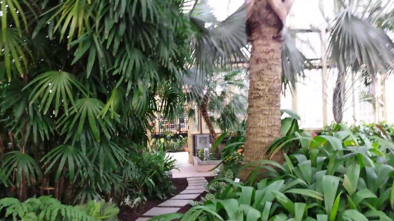 Rawlings Conservatory Of Baltimore