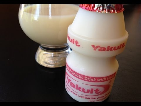 kefir. yakult produced with probiotic yogurt-kefir, viili filmjolk, caspian and bulgaricus kefir
