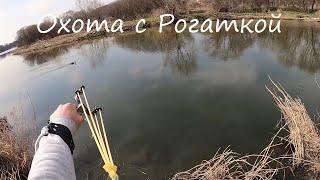 Рыбалка на сазана онлайн, тест стрел, ранняя весна 2020