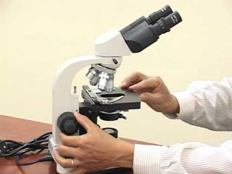 Mô tả kính hiển vi sinh học model BBN - 136B